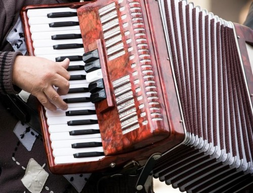 Expert Accordion Instruction And Performances This Year